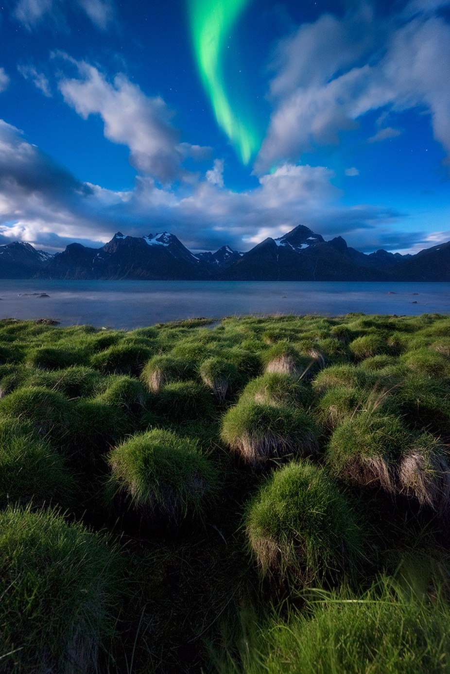 Green Night by Tor-Ivar