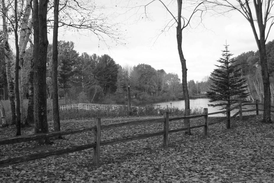 Lake walk on a bridge.