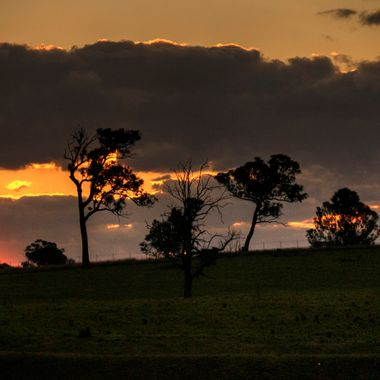 Sunset Collection (35) - Badgery's Creek