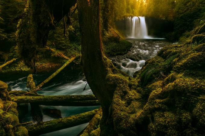 Community Spotlight: Matt Payne's Landscape Photography