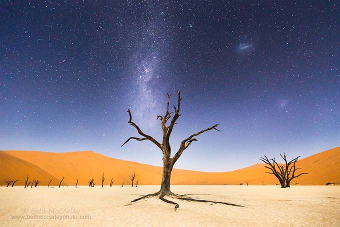 A Night At Deadvlei by bemccarley - A Lonely Tree Photo Contest
