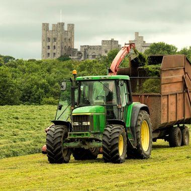 Farmer gathering grass near Penrhyn Castle, Bangor.