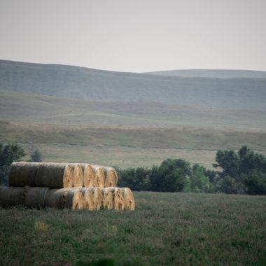 One method of drying freshly cut hay and then storing it.