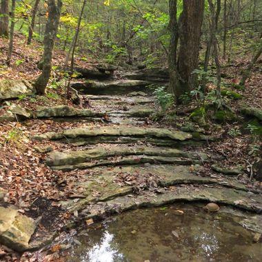 branson trail