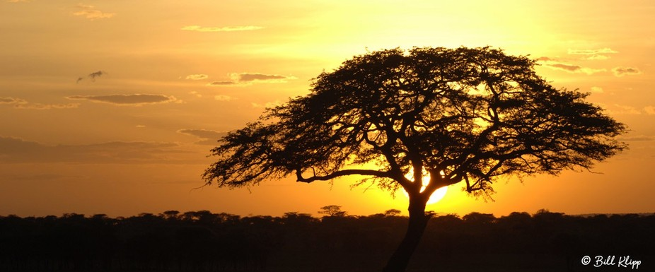 While on safari in the Serengeti Tanzania we stopped for a sundowner.   Bill Klipp Check out my o...