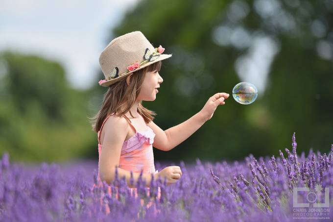 CJP Mayfield Lavender Farm by Chrisjphotography - Youngsters Photo Contest