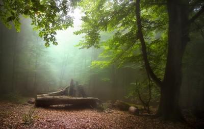 green serenity
