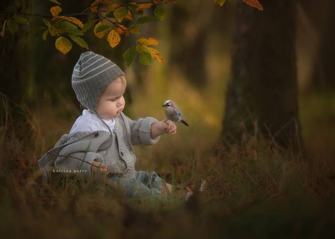 New Friendships by wonderandwhimsy - Youngsters Photo Contest