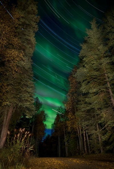 Star Trail and Northern Lights