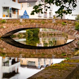 Eye Bridge