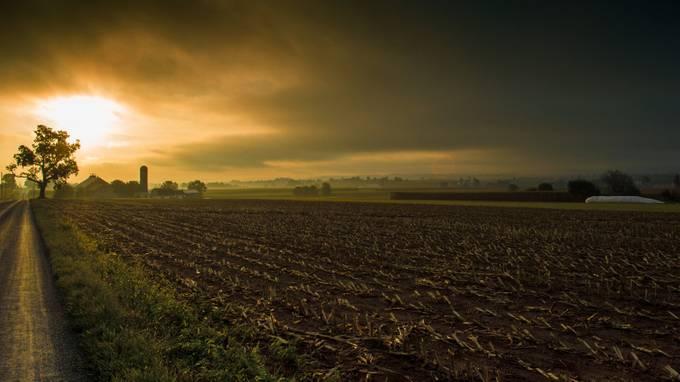 Farmland Morning by teewhyell - Dry Fields Photo Contest