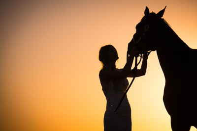 A Bride and Her Horse Silhouette