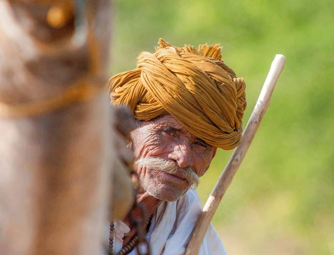 The Camel Driver by JohnStager - Cultures of the World Photo Contest