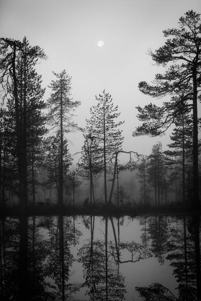 20150831-Finland 03-3656