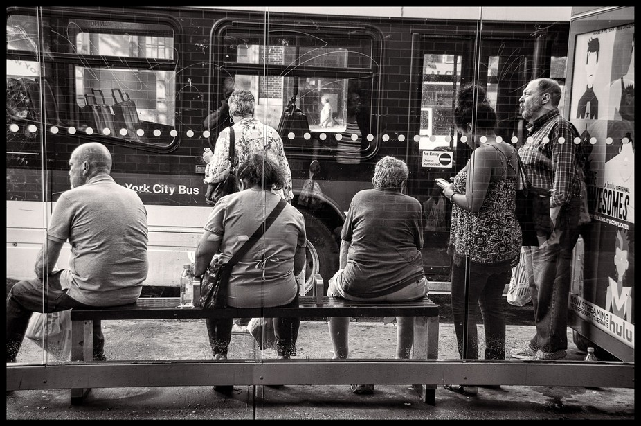 Bus Stop NYC