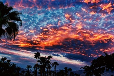 Coachella SKy