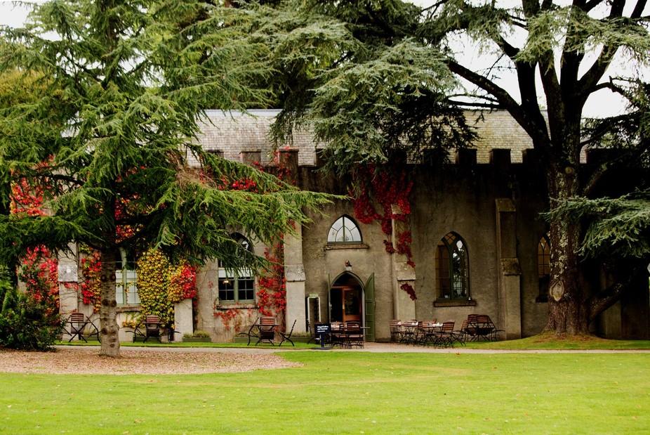 Chapel Tea Room Saltram