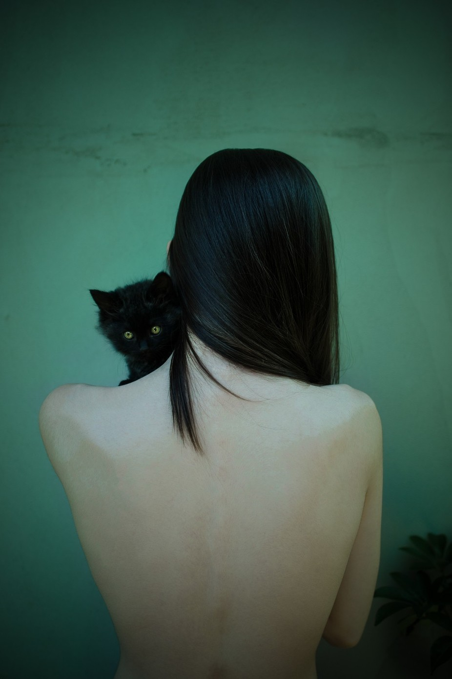 The girl and the cat by doina-domenicacojocaru - Feline Beauty Photo Contest