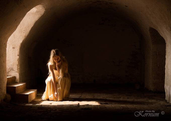 Cinderella by Kornum-Photo - Experimental Light Photo Contest