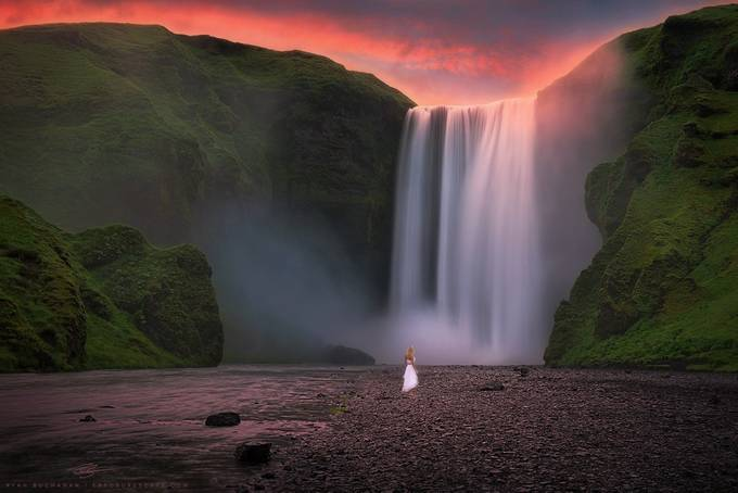 The Proposal by ryanbuchanan - People In Large Areas Photo Contest