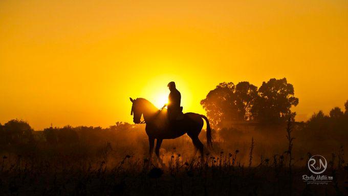 The sunset rider by RaduNutiu - The Sun Behind Photo Contest