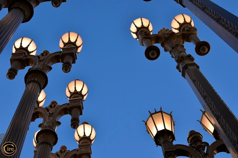 This is an installation by Chris Burden entitled Urban Light.