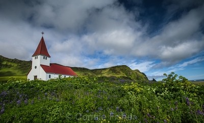Church in the Flowers