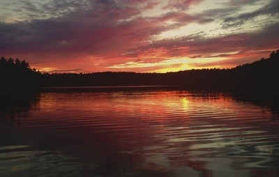Sunset at Walden Pond