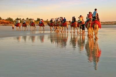 Camel Riders.