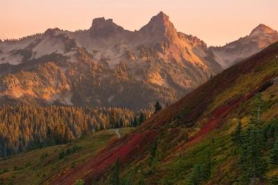 Pinnacle of Fall