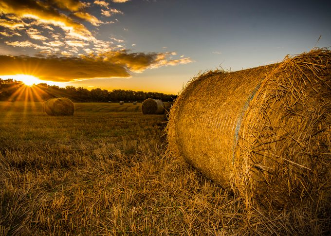 last light on the harvest by pauljoinson - Dry Fields Photo Contest