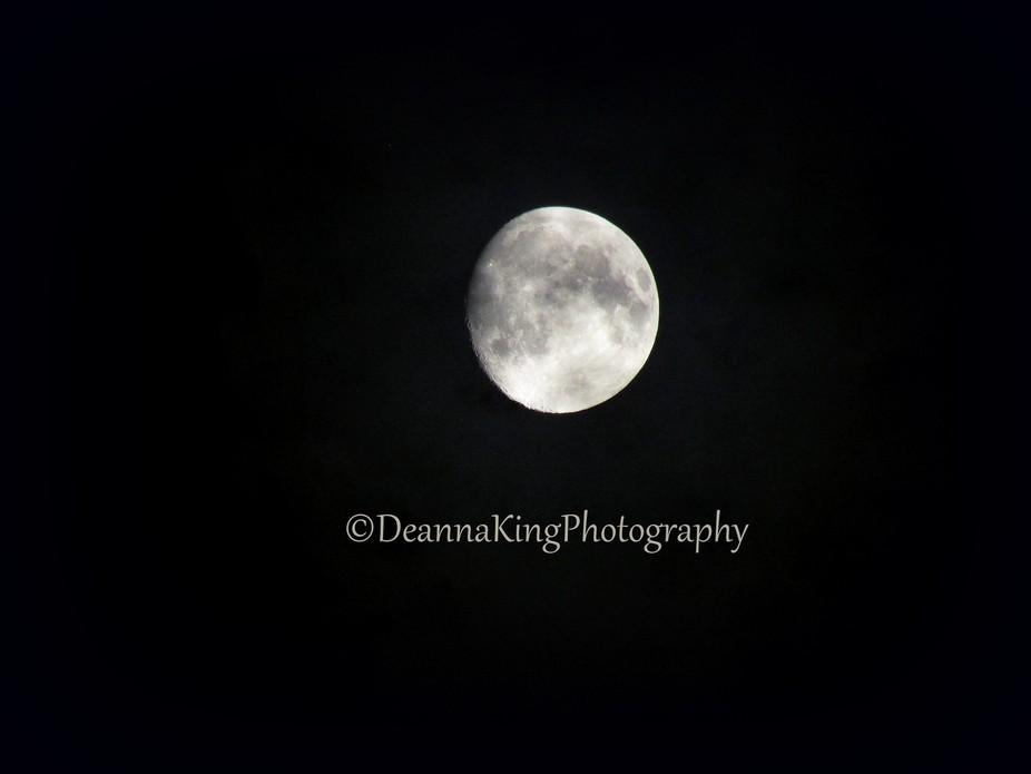 moon dakp