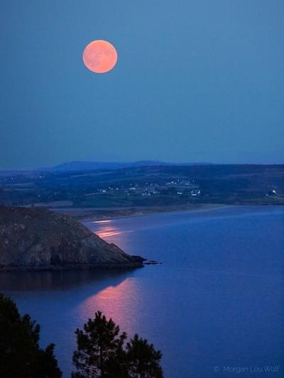 The harvest super full moon