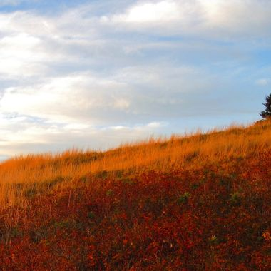 Taken on a late fall afternoon, Cape Split NS