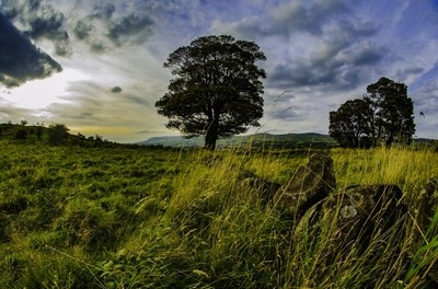 croy hill