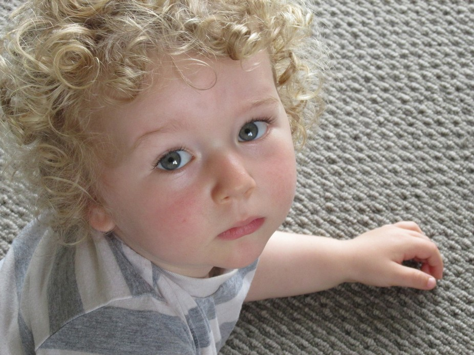 This is my grandson Alfie on a very rare quiet moment.