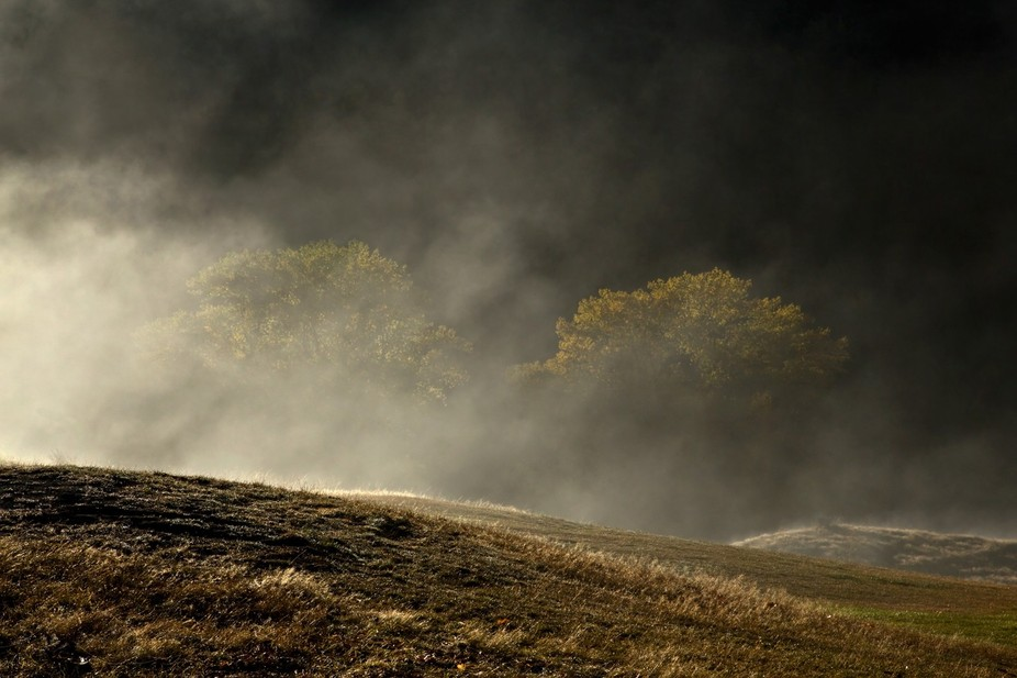 The mist and frost in this autumn morning made for a mysterious image.