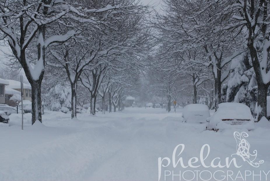 A blast of winter that shut down the city!