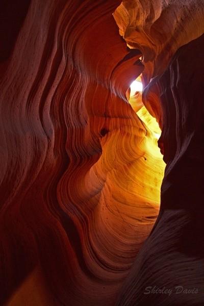 Canyon X  IMG_8036