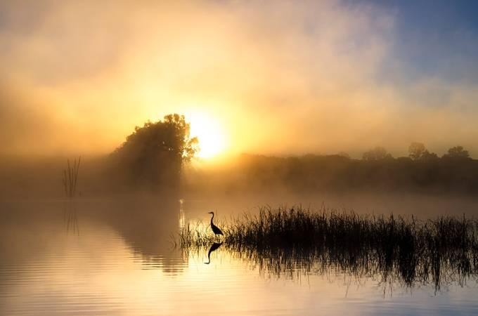 Alentejo by joopsantos - The Sun Behind Photo Contest