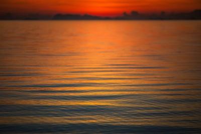 Whisper of the waves