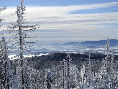 frosty winterday