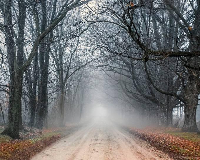 Misty Lane by DavidMonty - Mysterious Shots Photo Contest
