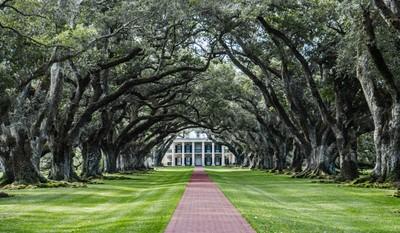 Oak Alley Plantation - Louisiana