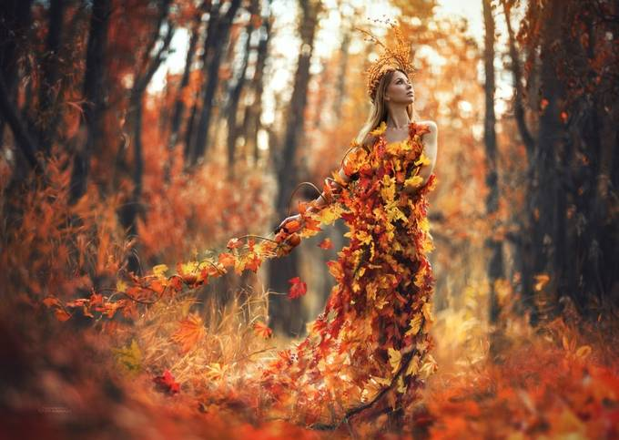 Autumn spell by Ethos - Orange Is The Color Photo Contest