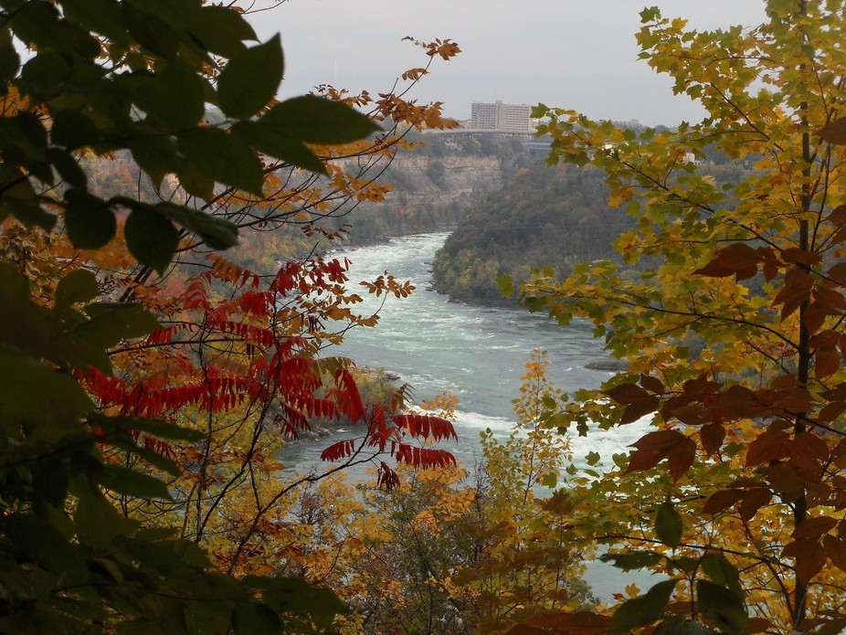 A photo I took from a hiking trail along the Niagara River Gorge, Niagara Falls, Canada.
