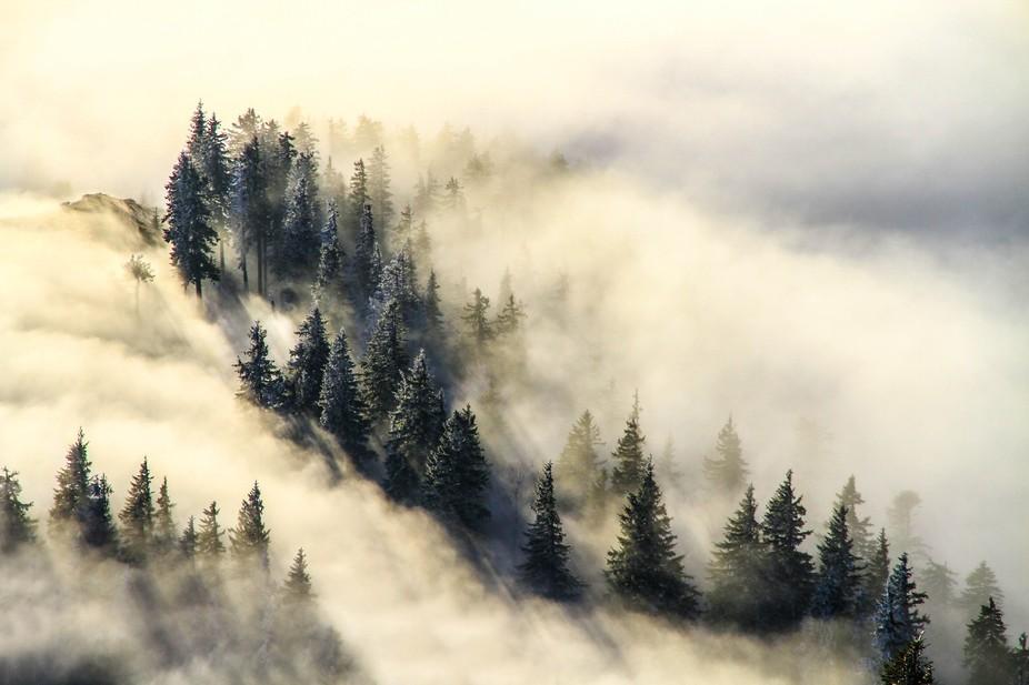 cozia mountains -