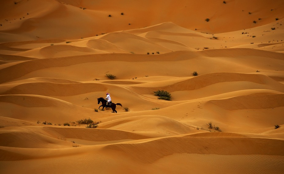 Of Liwa Oasis, where the golden the sand hills and charming He b...