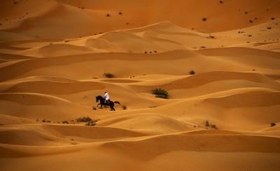 The desert world beautiful