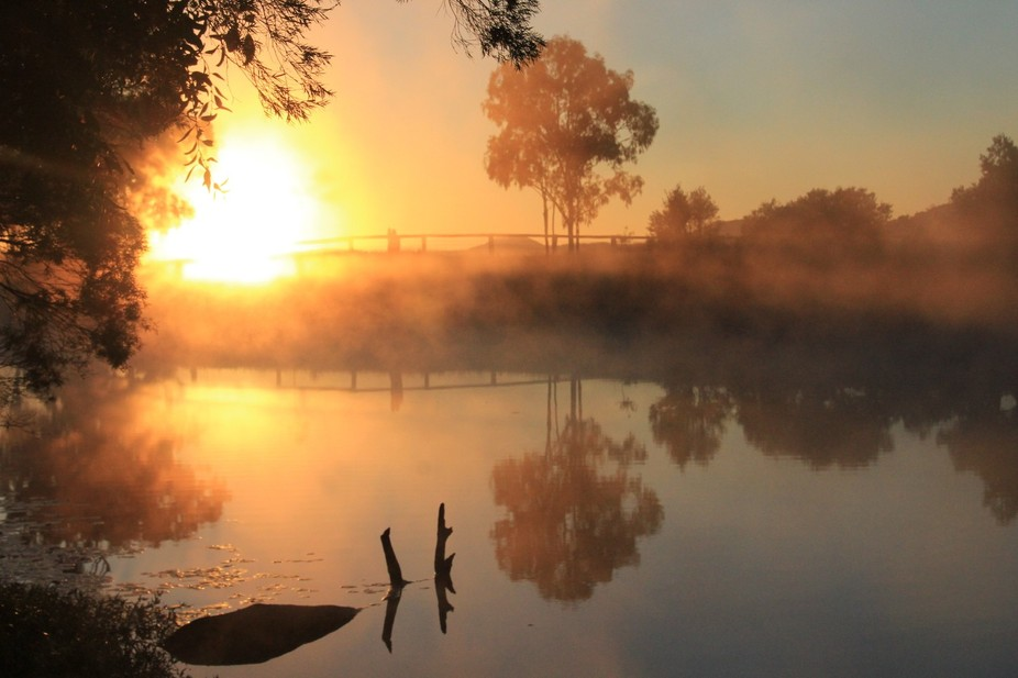 Foggy morning start to the day Henderson Park Queensland